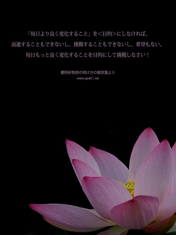 20130724-75_Ja