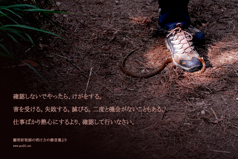 20140708-72-73_Ja