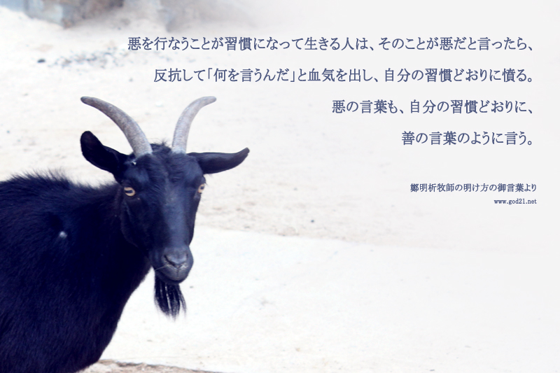 20131230-6_Ja