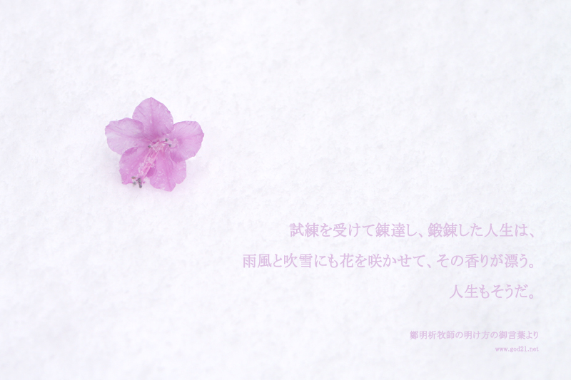 20140214-96_Ja