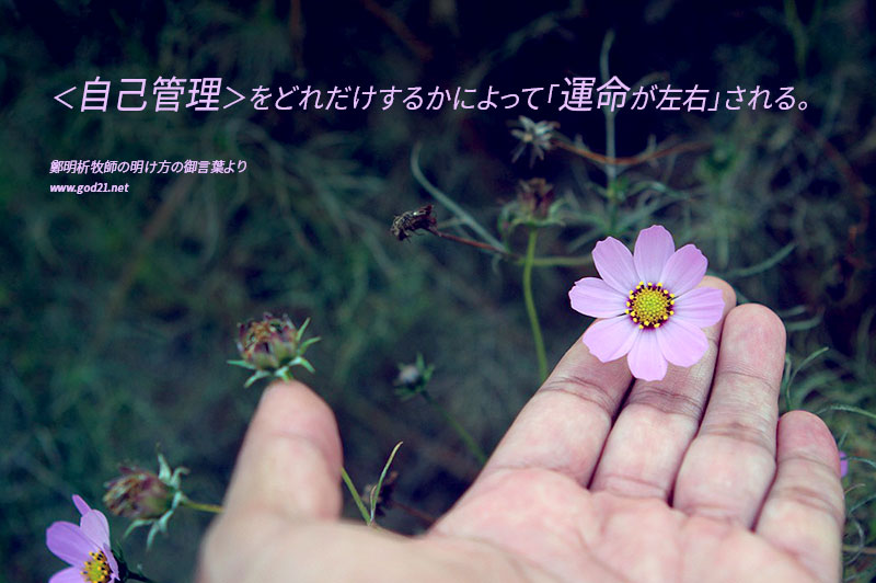 20151105-21_Ja