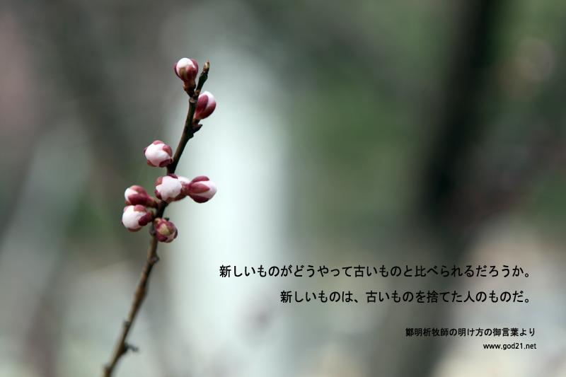 20130913-18_ja