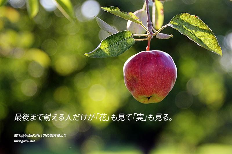 20150707-1_ja
